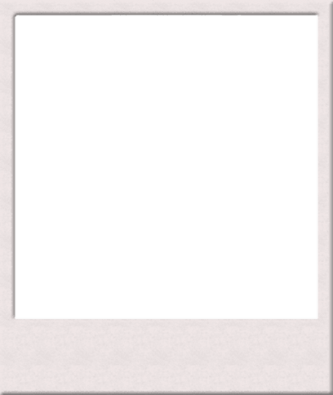 Polaroid picture clipart blank. Png image with transparent
