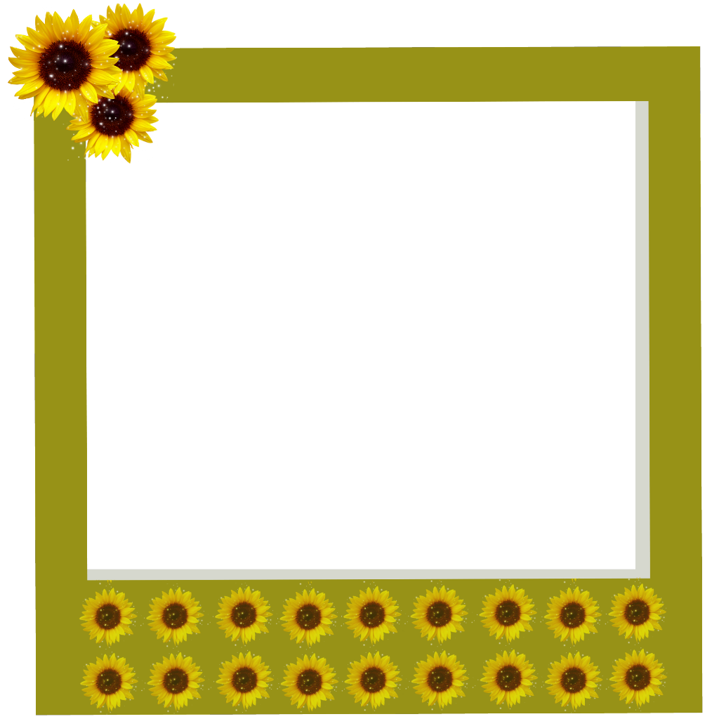 Polaroid picture clipart aesthetic. Tumblr frame frames sunflowers