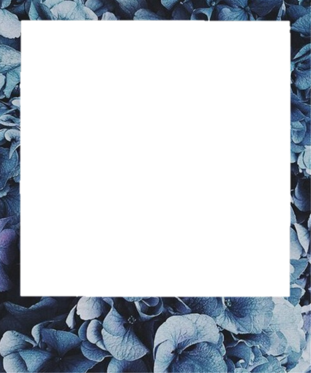 Polaroid picture png aesthetic. Frame flower sticker