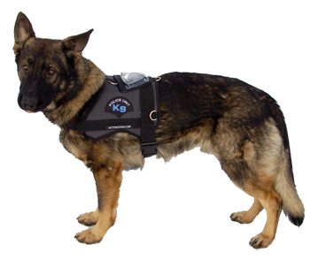 Police dog png. Patrol harness with strobe