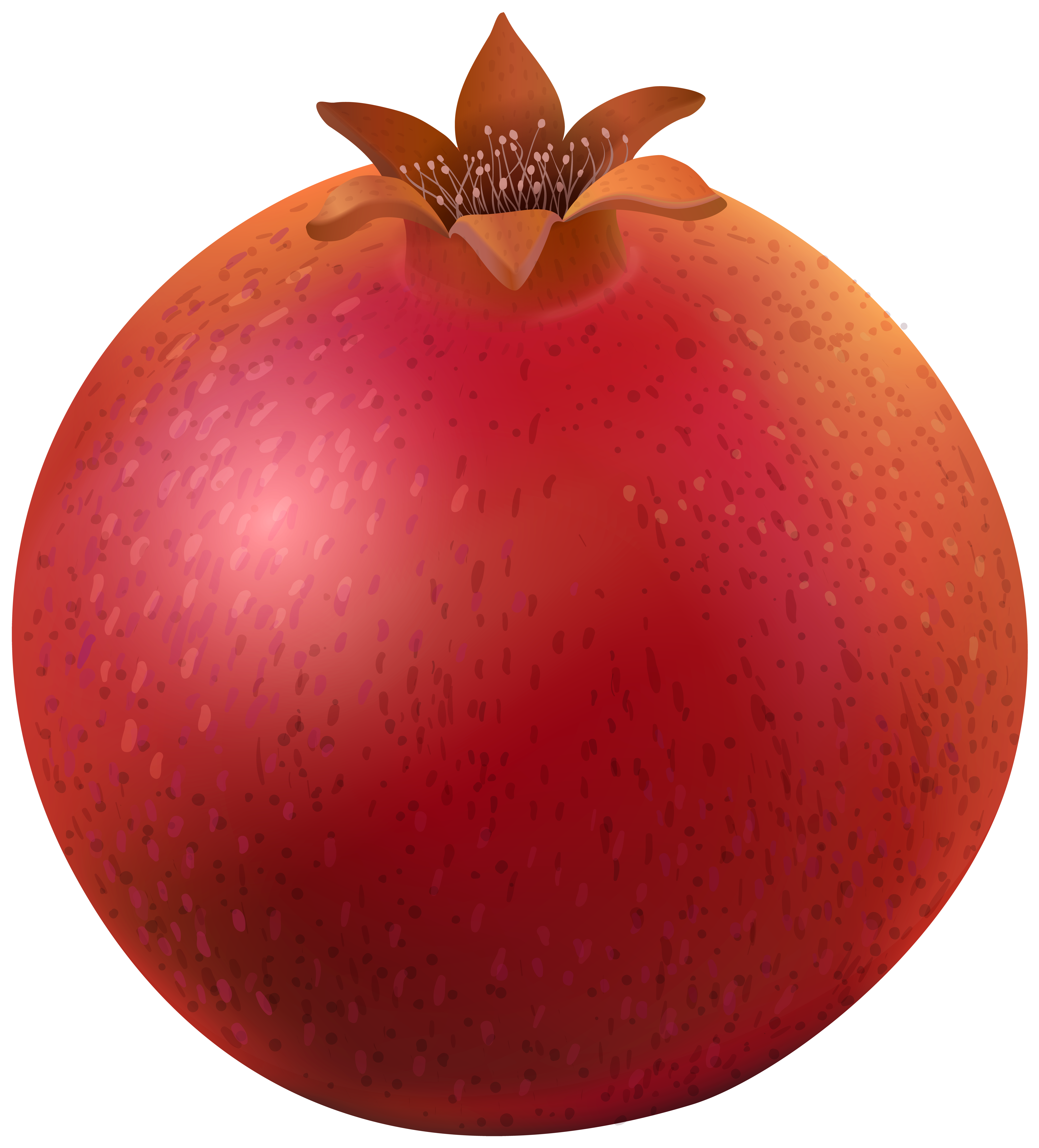 Pomegranate clipart. Png clip art image