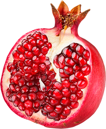 pomegranate transparent blood