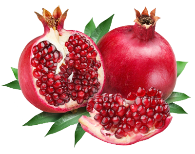 pomegranate transparent single