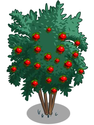 Pomegranate tree png. Image angel red icon