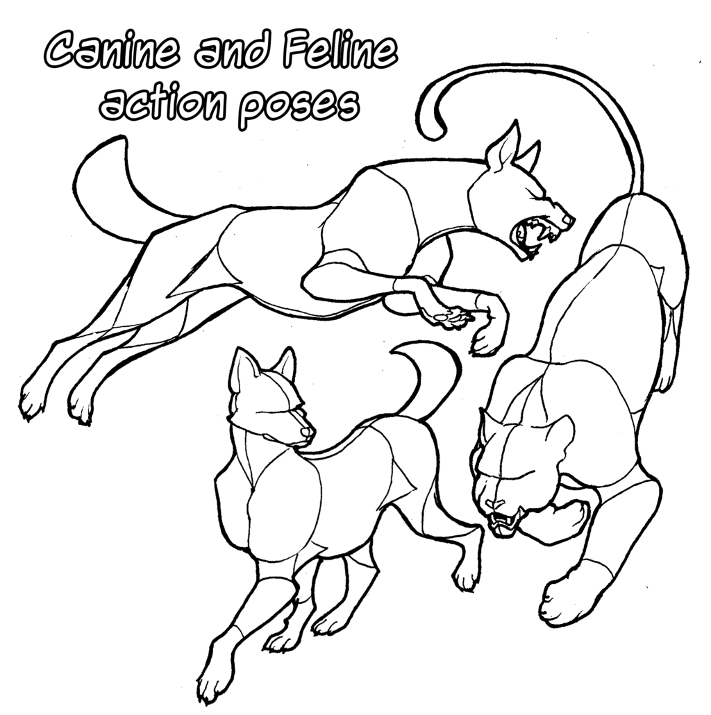 Poncho drawing action poses reference. Pose canine and feline