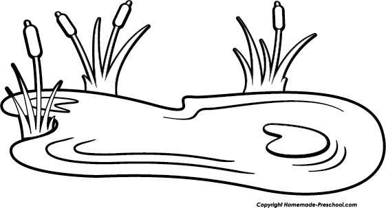 Duck black and white. Lilypad drawing pond jpg download