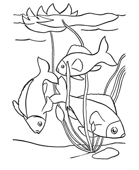 Pond clipart fishing pond. Fish drawing at getdrawings