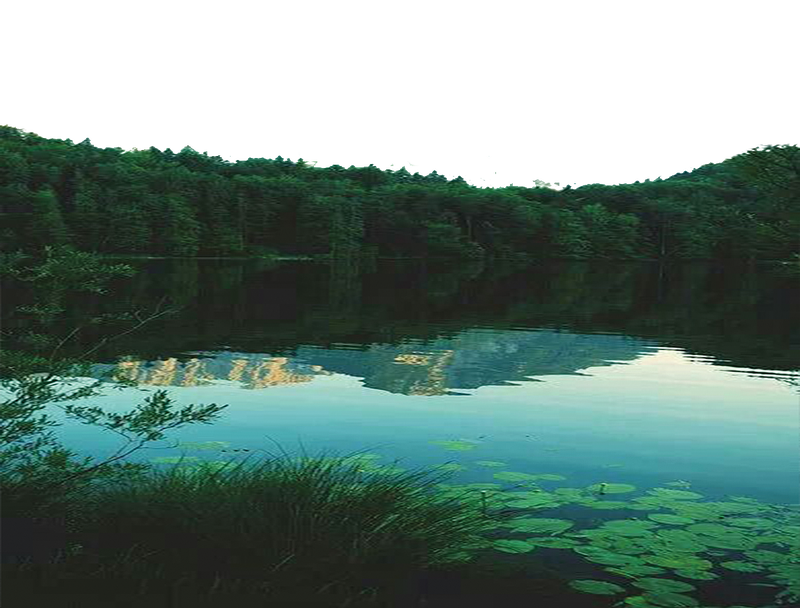 Pond transparent. Png nature by theartist