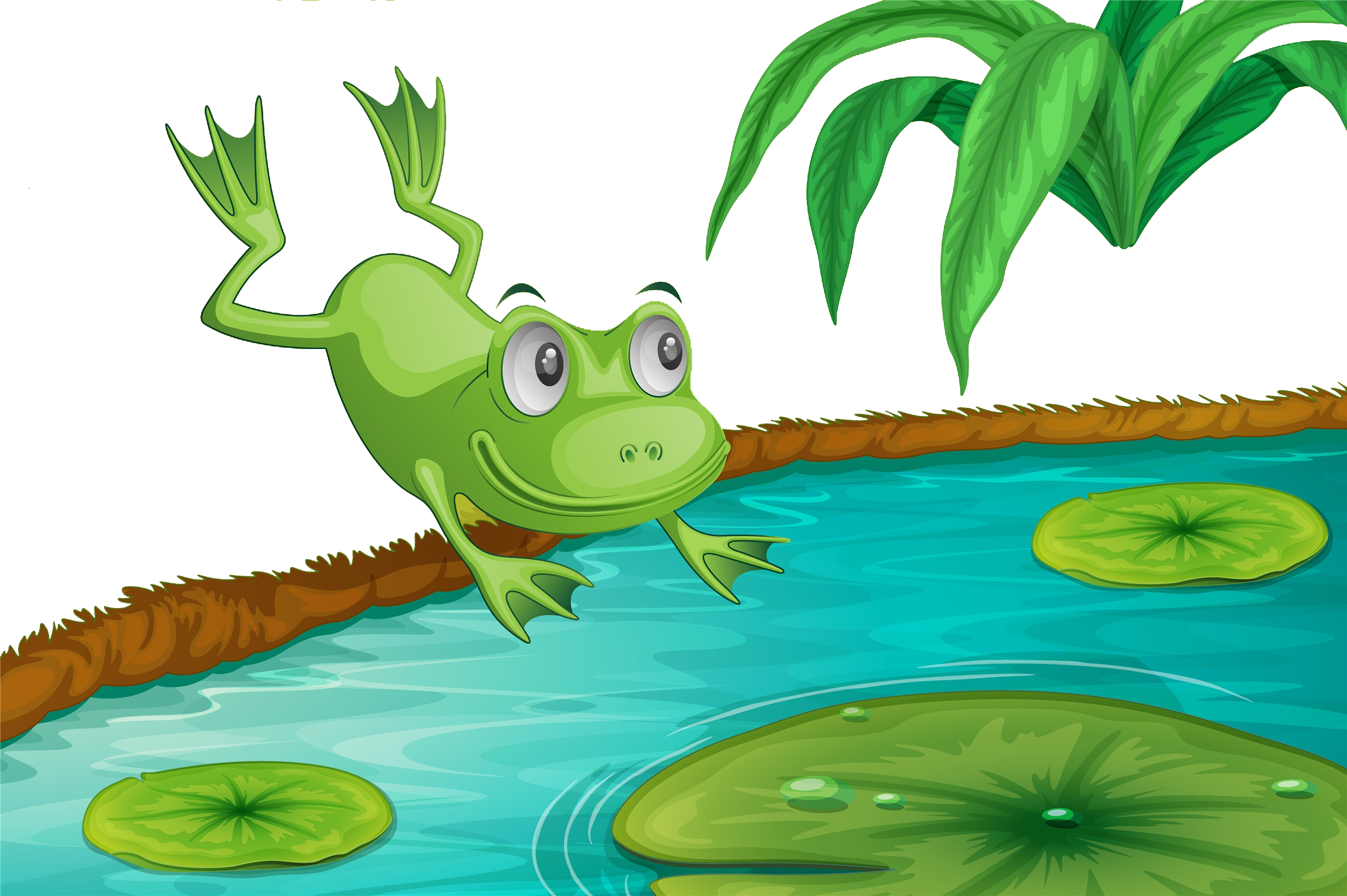 Pond vector cartoon frog. In the lotus transprent
