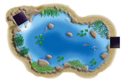 Pond transparent top. Png pictures free icons