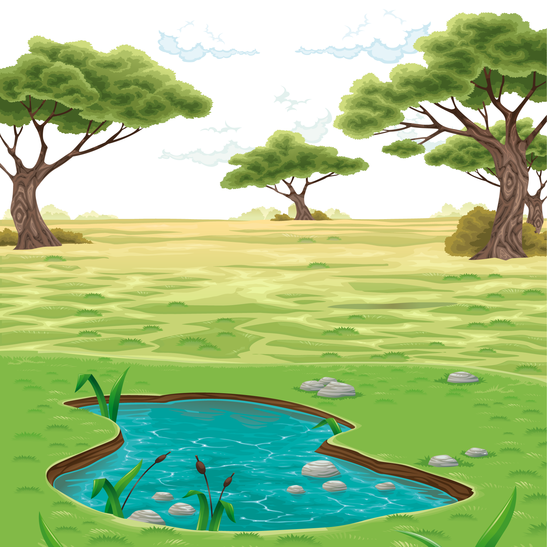Pond vector. Landscape drawing clip art