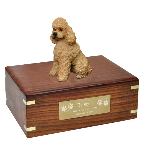 Apricot sport dog urn. Poodle clip cut image free stock