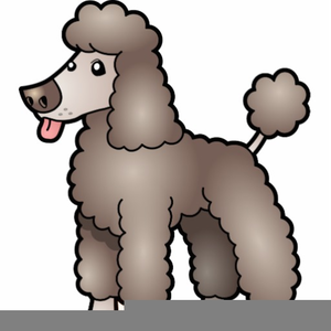 Poodle clipart brown poodle. Free images at clker