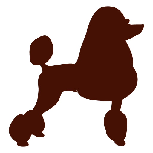 Poodle svg. Dog silhouette transparent png
