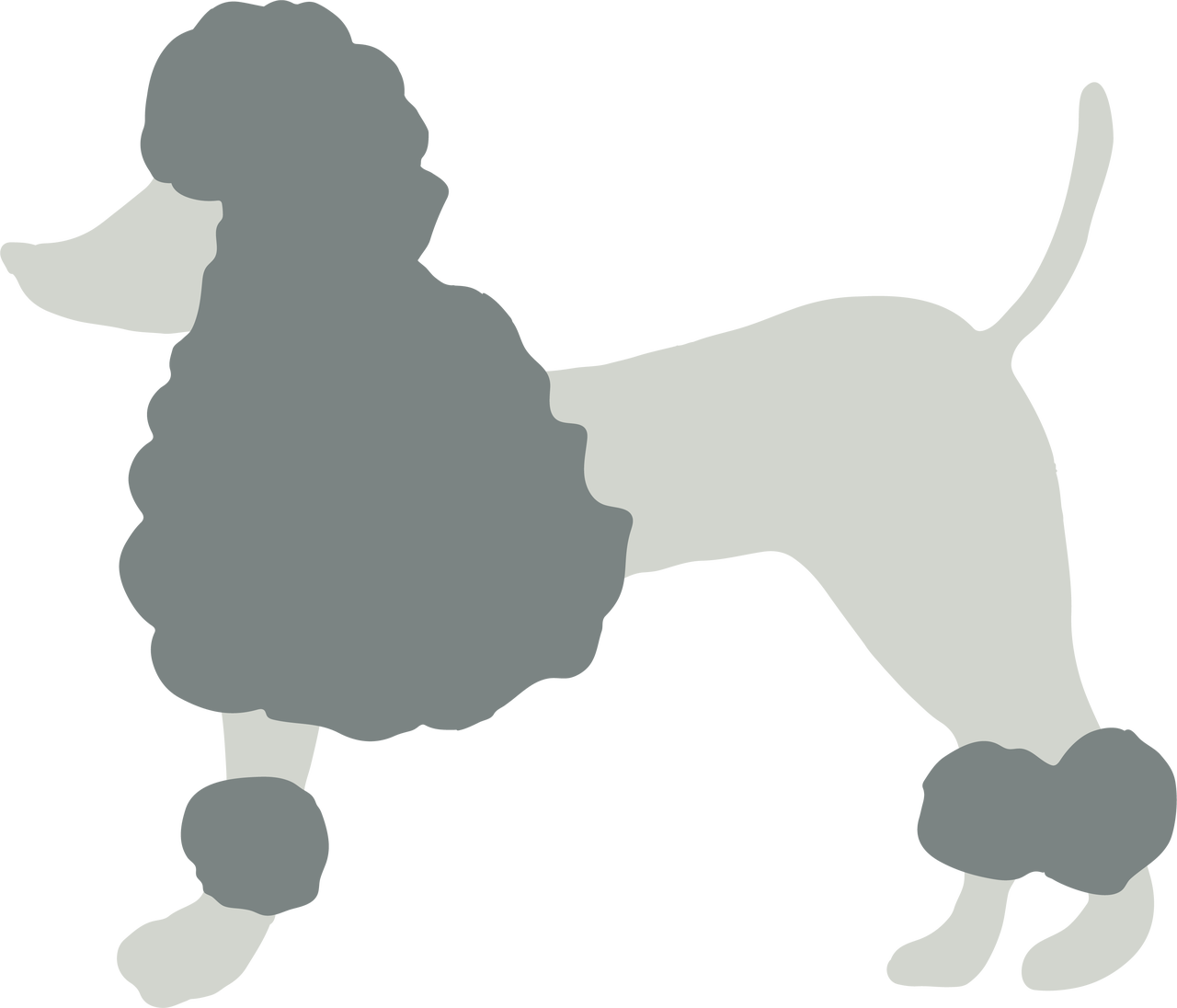 Poodle svg dog. Cut file snap click