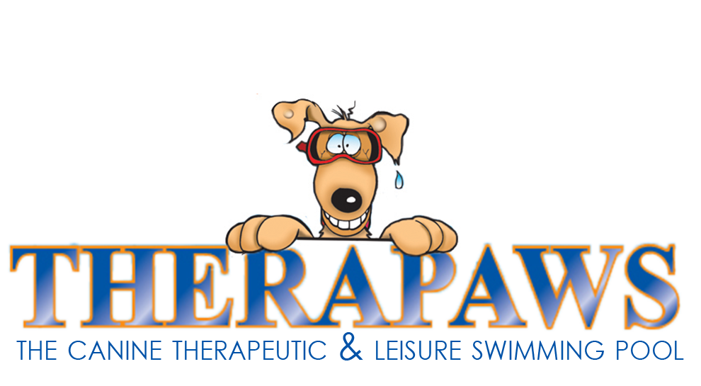 Pool clipart dog. Home therapaws the first