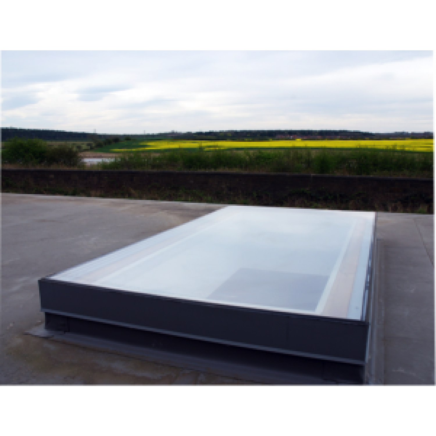 Pool transparent glass roof. Skyseal flat fixed rooflight