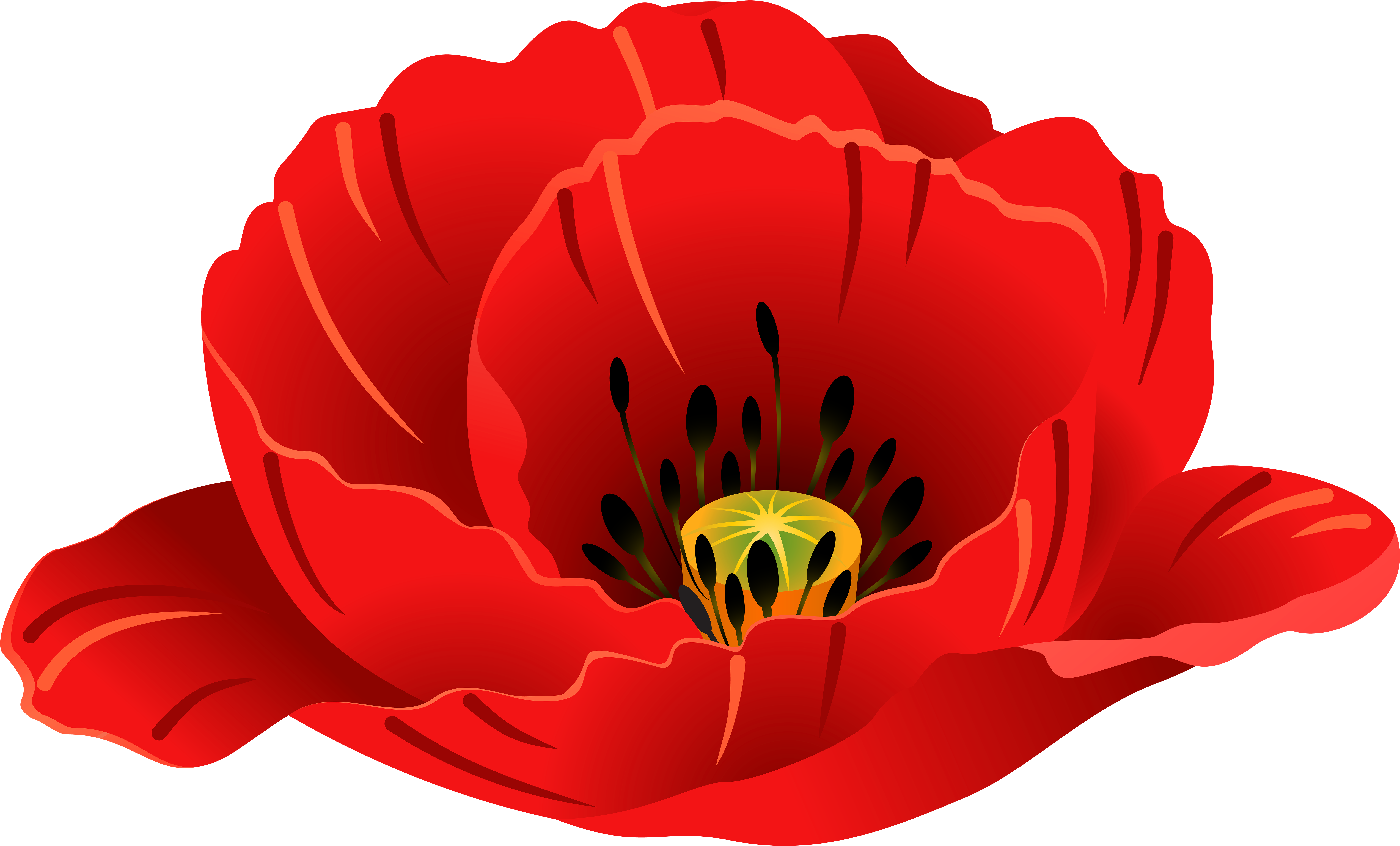 20 Poppy Clip For Free Download On Ya Webdesign