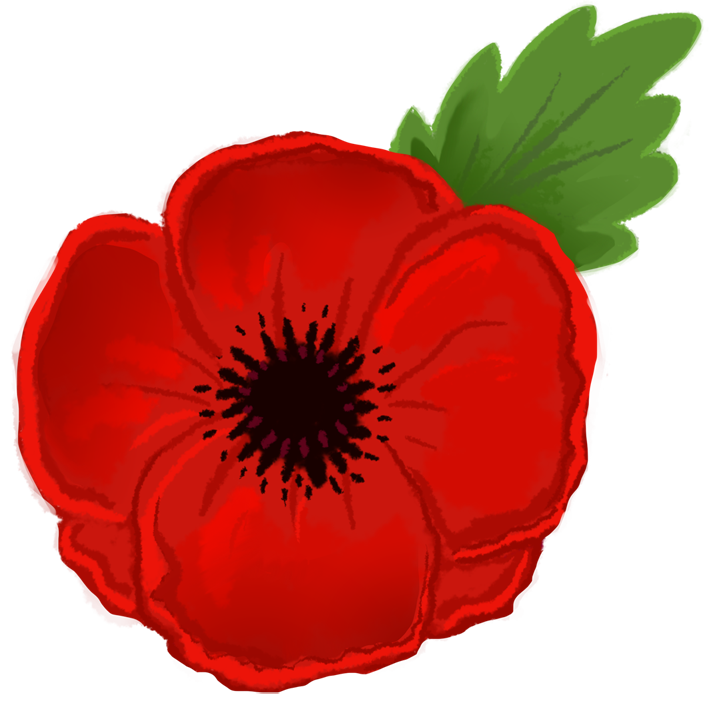 Bouquet vector poppy. Free cliparts download clip