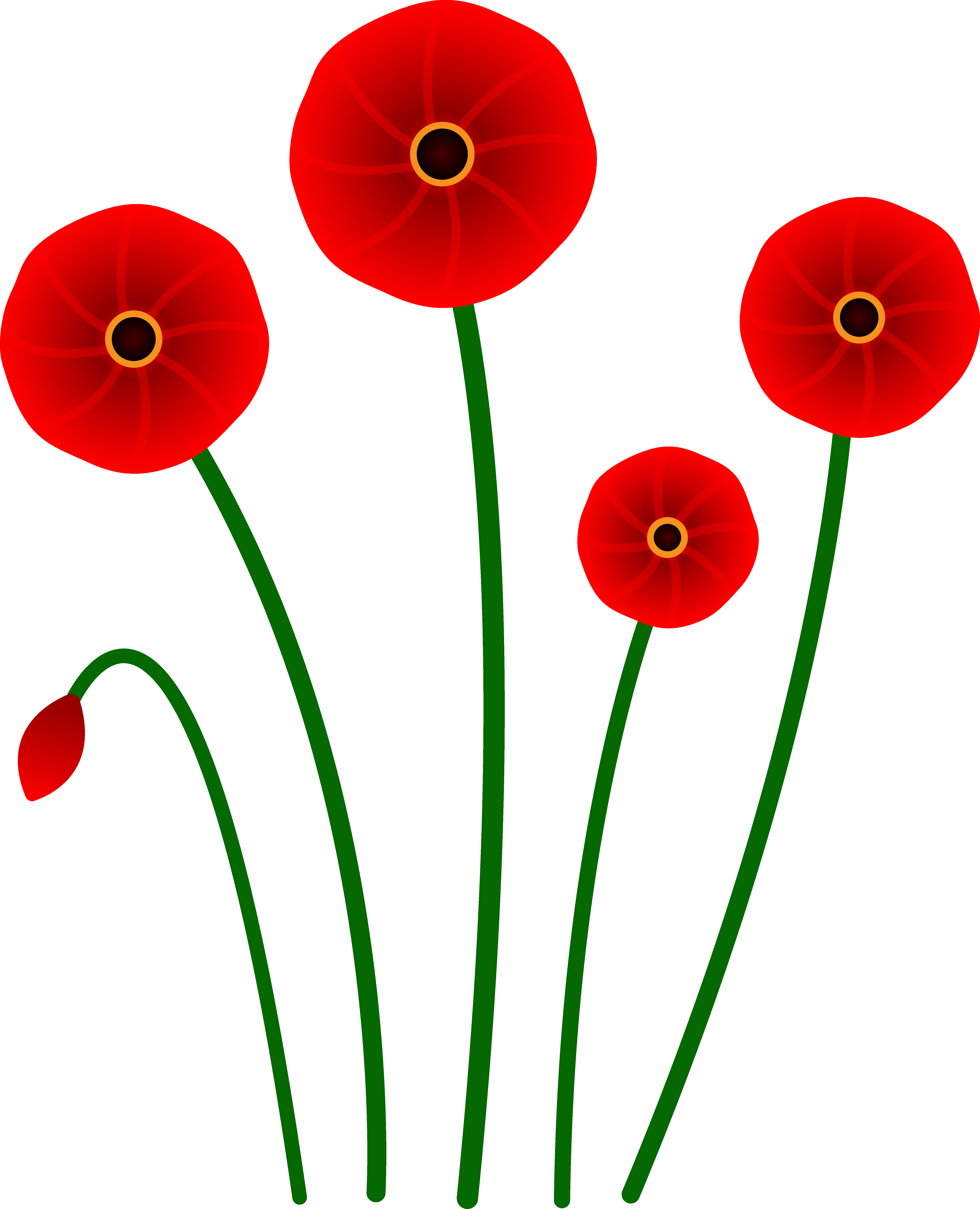 Poppy clipart single poppy. Flowers