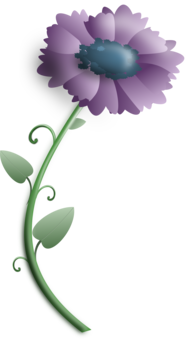 Poppy clipart stylized. Yellow purple flower green
