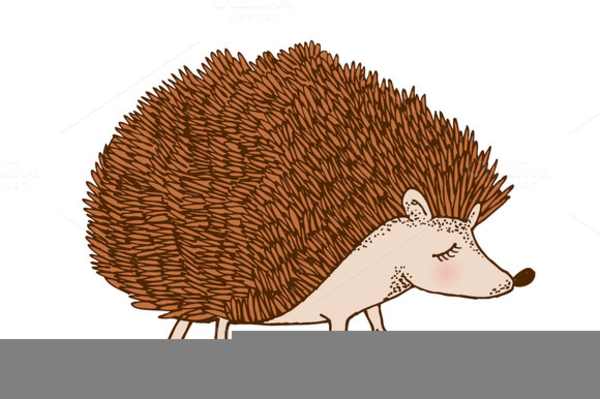 Porcupine clipart. Free images at clker