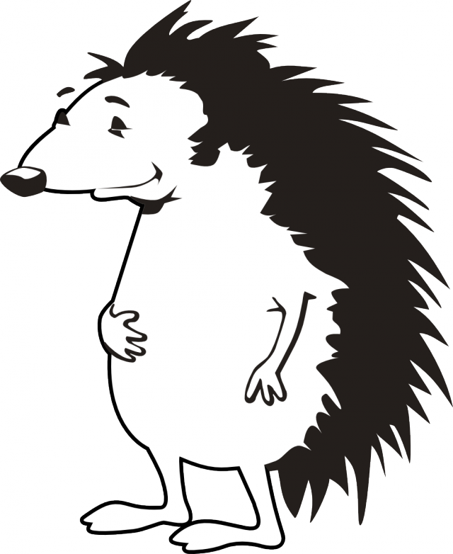 Porcupine clipart white background. Free coloring pages download