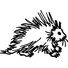 Porcupine clipart drawn. Loving some people is