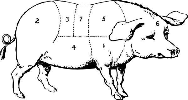 Pork drawing. Labeled pig clip art