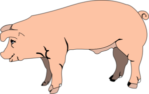 Pork drawing side view. Hog clipart pig foot