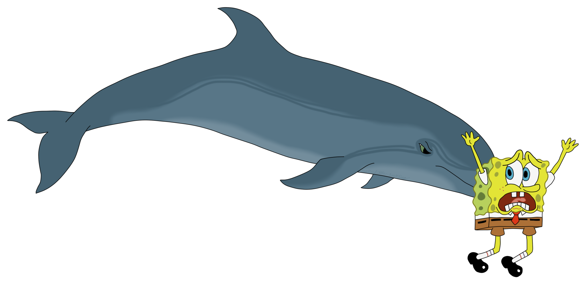 Porpoise drawing. A bottlenose dolphin sponging