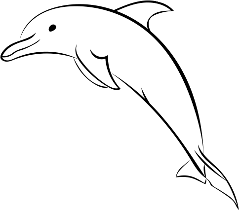 Porpoise drawing easy. Spinner dolphin at getdrawings