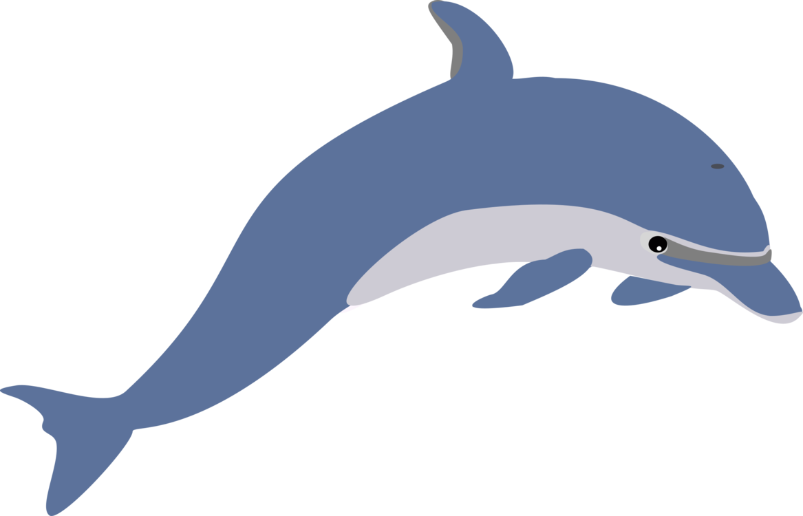 Porpoise drawing under sea. Dolphin download cetacea document