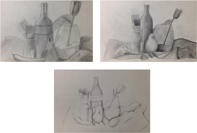 portfolio drawing still life