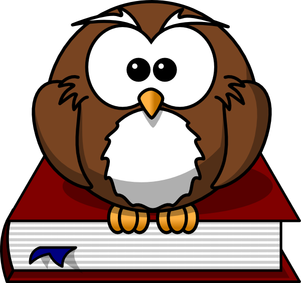 Earthquake vector cartoon. Free owl animation download