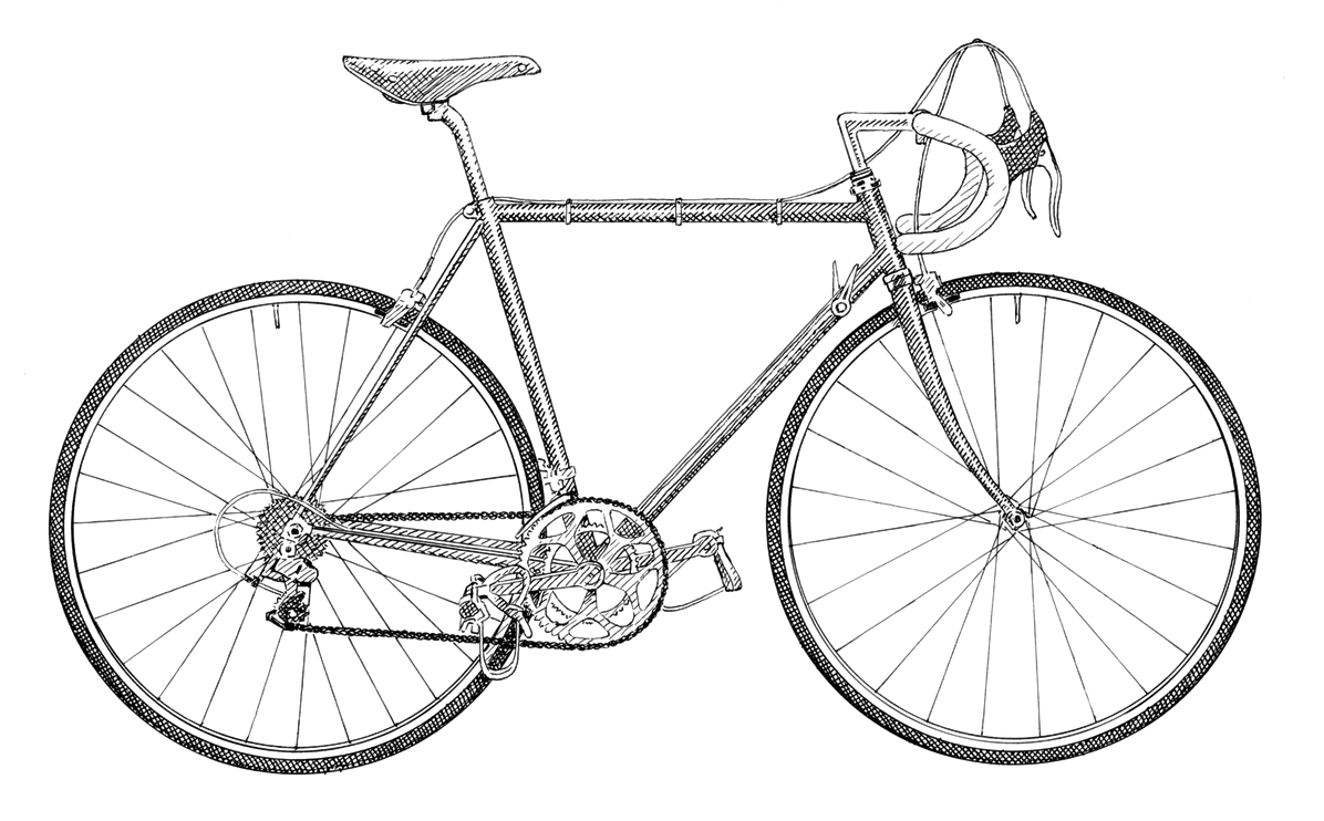 Postcard drawing bicycle. Uk cycling festival and