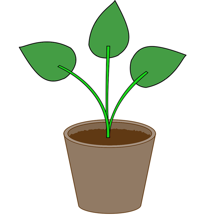 pot with soil transparent background png