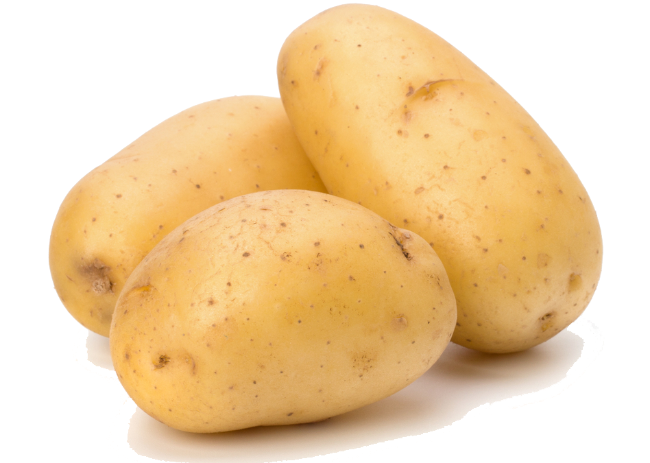Potatoes were illegal in. Potato png svg library