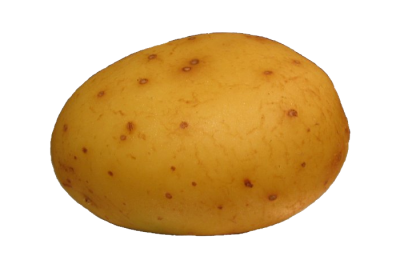 Potatoes clipart transparent background. Gallery isolated stock photos