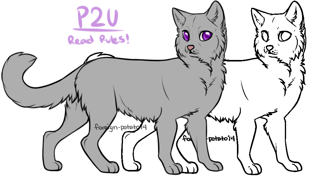 Transparent base warrior cat. Lines by foreign potato