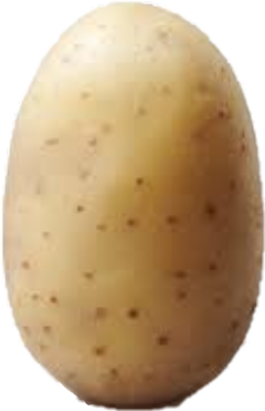 Potatoes drawing face. Popular and trending potato