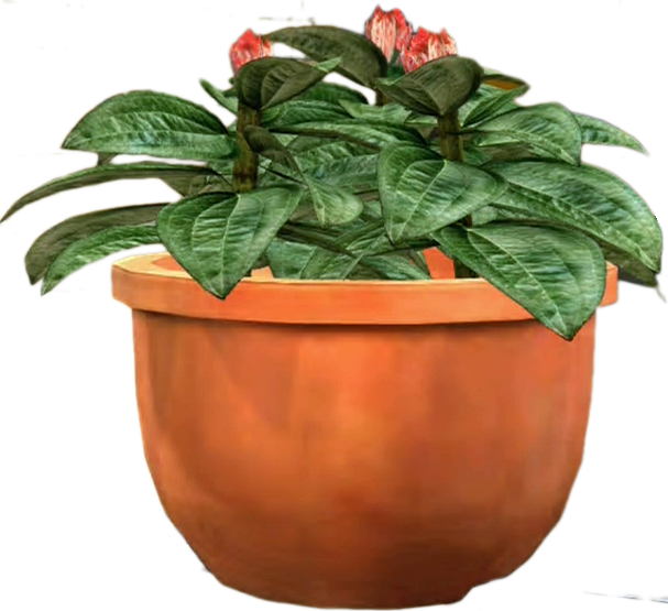 Potted flower png. Image dead rising plant
