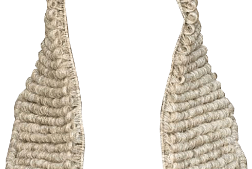 Powdered wig png. Judge transparent images pluspng