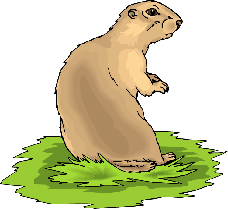 Prairie dog open mouth png hind legs. Clipart panda free images