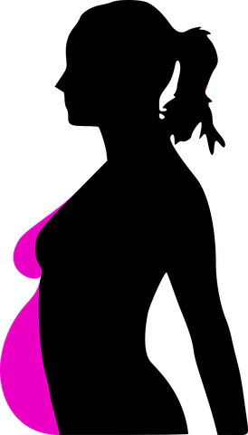 Pregnant vector maternity. Pregnancy woman profile alobogab