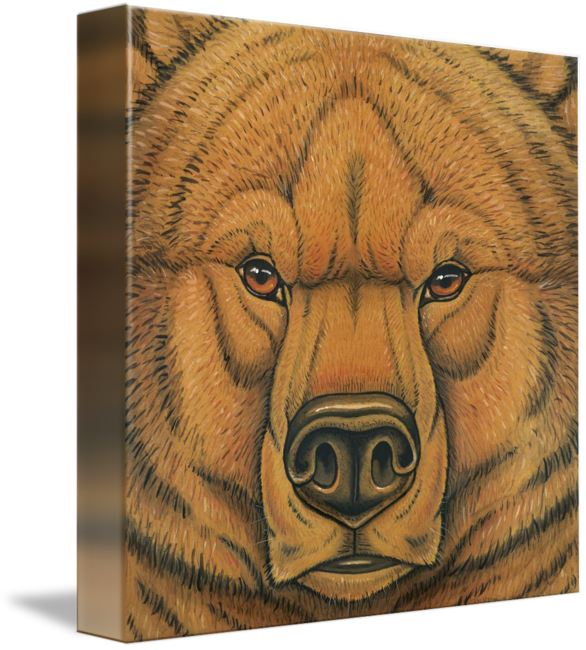 Prehistoric drawing. Cave bear series by