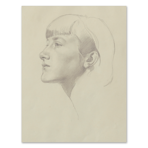Portraits drawing ink. Portrait of diana princess