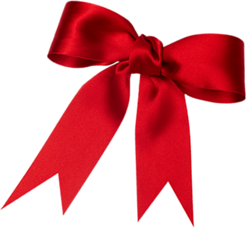 Present bow png. Gift ribbon transparent background