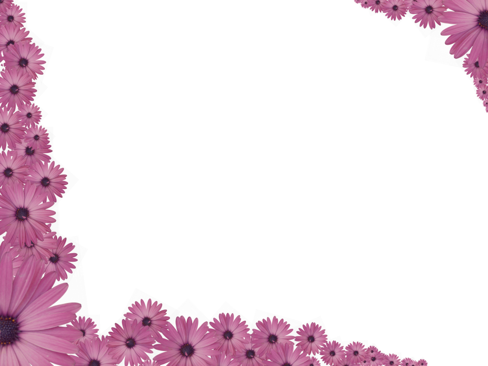Pretty borders png. Pink flowers sprinkled at
