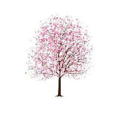 Pretty clipart cherry blossom tree. Branches of blossoms best